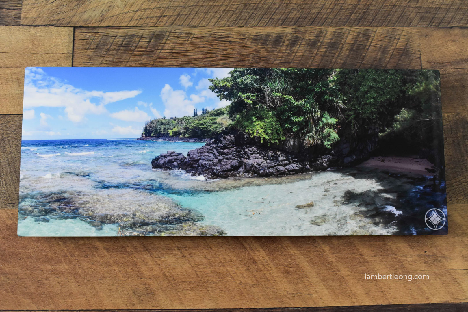'Turtle Cave' (8x20in Metal)